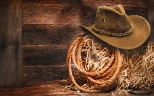 Lasso And Cowboy Hat On Hay