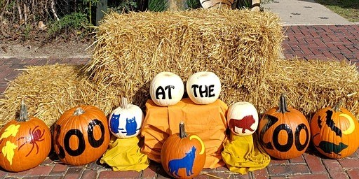 Boo at the Zoo painted pumpkins